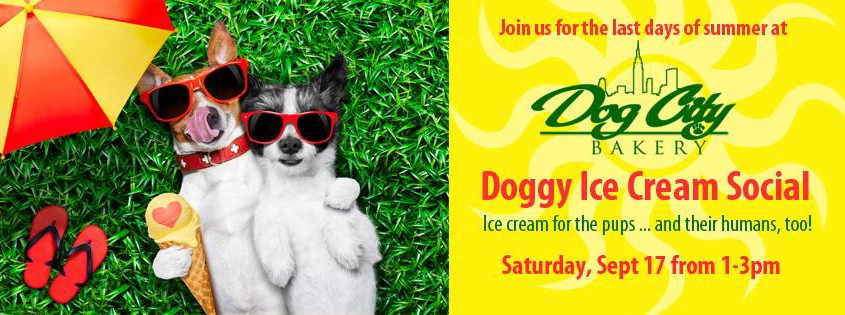 Doggy Ice Cream Social