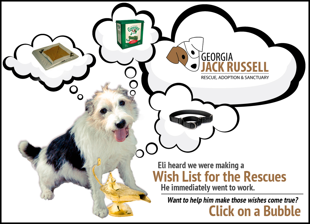 Amazon Wish List for the Rescues