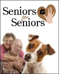 Seniors for Seniors Program - Georgia Jack Russell