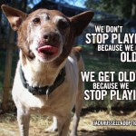 We don't stop playing because we get old. We get old because we stop playing.