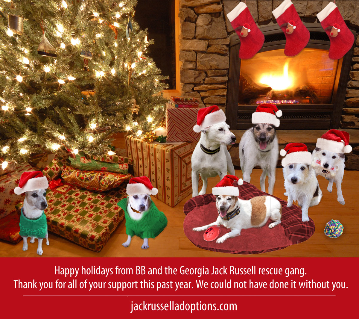 Happy Holidays Georgia Jack Russell Rescue Gang Christmas Card