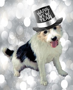 new-year-wish-list-eli
