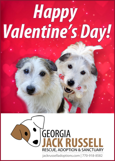 happy-valentine-jrt