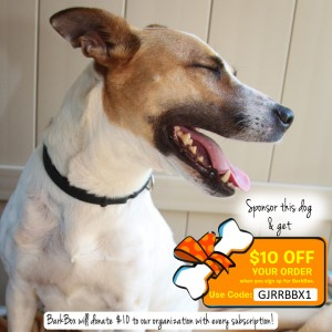 Sponsor Millie by purchasing a BarkBox subscription. You'll get $10 off your order and Millie will get $10. Use code GJRRBBX1