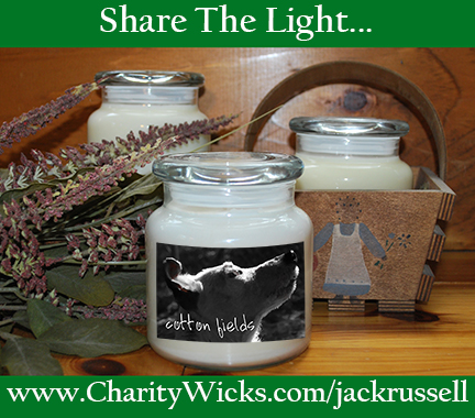 Share the light. Buy a candle and support Georgia Jack Russell Rescue, Adoption and Sanctuary.
