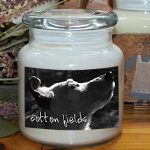 Buy candles to benefit Georgia Jack Russell Rescue, Adoption and Sanctuary