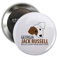 Jack Russell Buttons