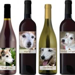 Georgia Jack Russell Rescue wines