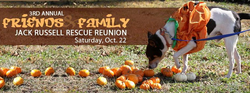 3rd Annual JRT Friends & Family Rescue Reunion