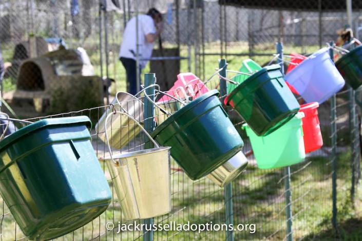 Clean water buckets