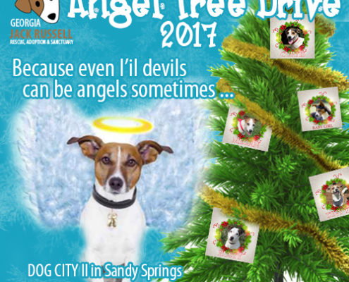 Angel Tree Drive 2017
