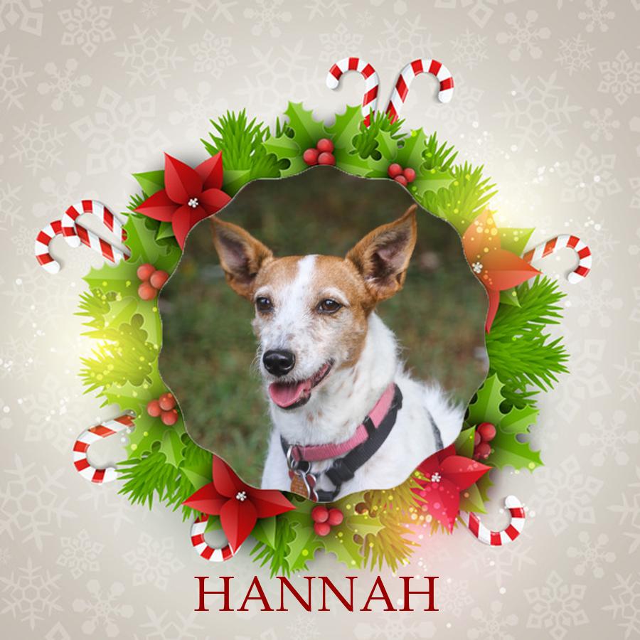 Angel Tree - Hannah