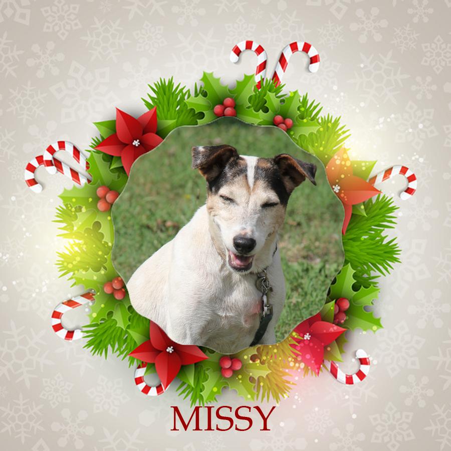 Angel Tree - Missy