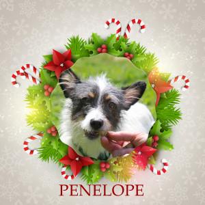 Angel Tree - Penelope