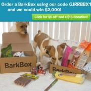 BarkBox Special