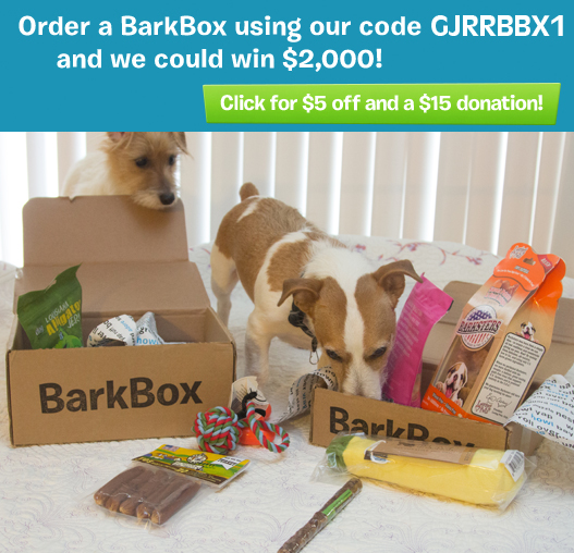BarkBox Special