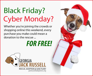 Shop on Black Friday and Cyber Monday and donate to the rescue ... for free!