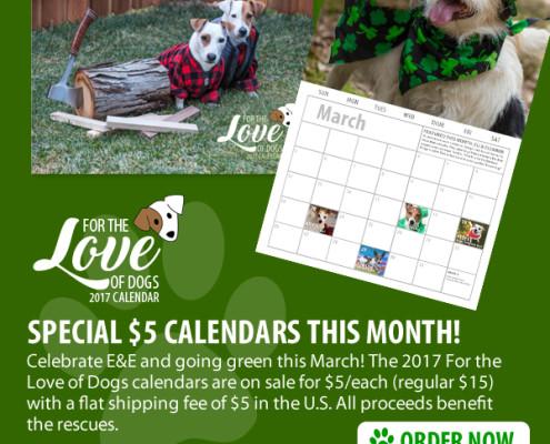 calendar-special-5