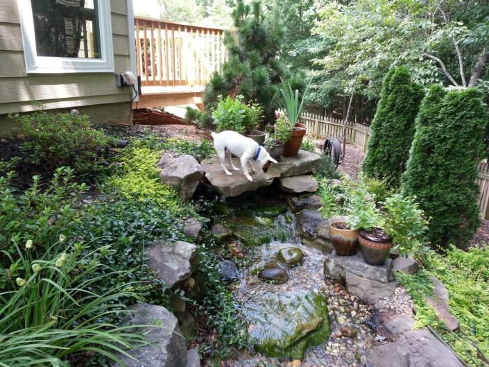 Decker's backyard