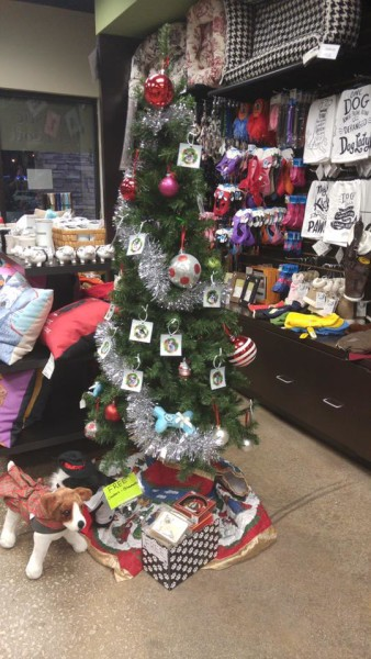 Angel Tree at Dog City