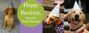 Dog City Barkday