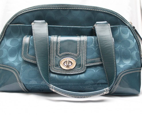 What can a Coach bag do for the rescue? Raise much-needed funs in our online auctions, that's what!