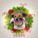 Duffy - Angel Tree
