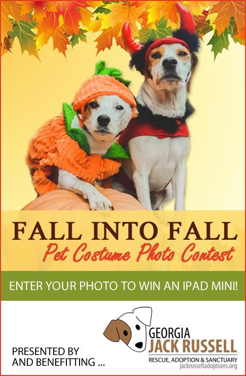 Fall into Fall Pet Costume Photo Contest