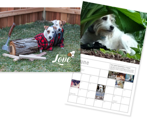 For the Love of Dog calendar