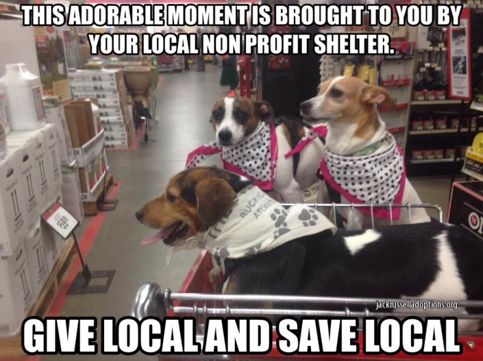 Give Local and Save Local