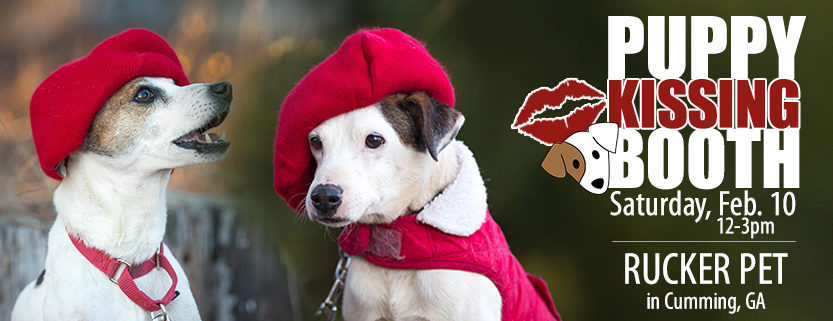 Puppy Kissing Booth event