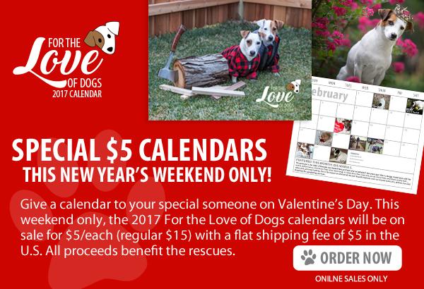 February $5 Calendars