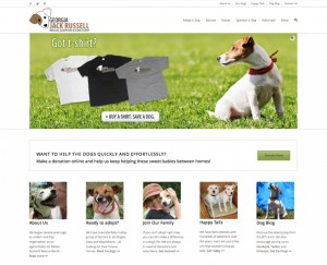 New Jack Russell Website