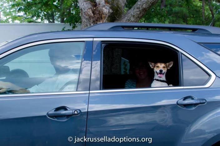 Jax leaving rescue