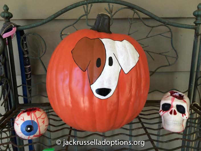 JRT Pumpkins