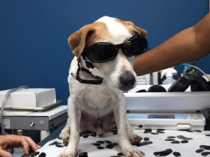 Kennedy at laser treatment