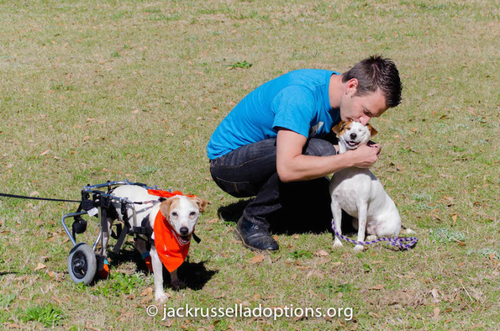 That's one proud papa! wink emoticon Isis Maria S. - The adventures of a Parson Jack Russell Terrier rocked everything she tried yesterday, too. From the look on his face, we think Kennedy is still convinced he could take her in a race.