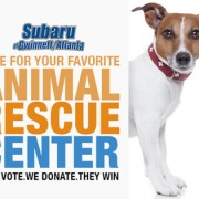 Help us win $700 for the rescues in the Subaru Facebook Contest
