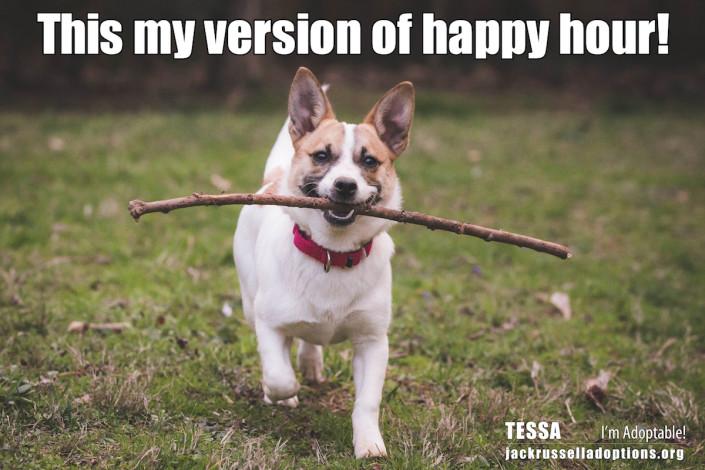 Tessa's Happy Hour