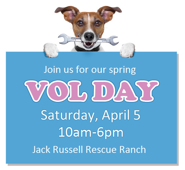 Join us for our spring Vol Day Sunday at the Jack Russell Rescue Ranch!