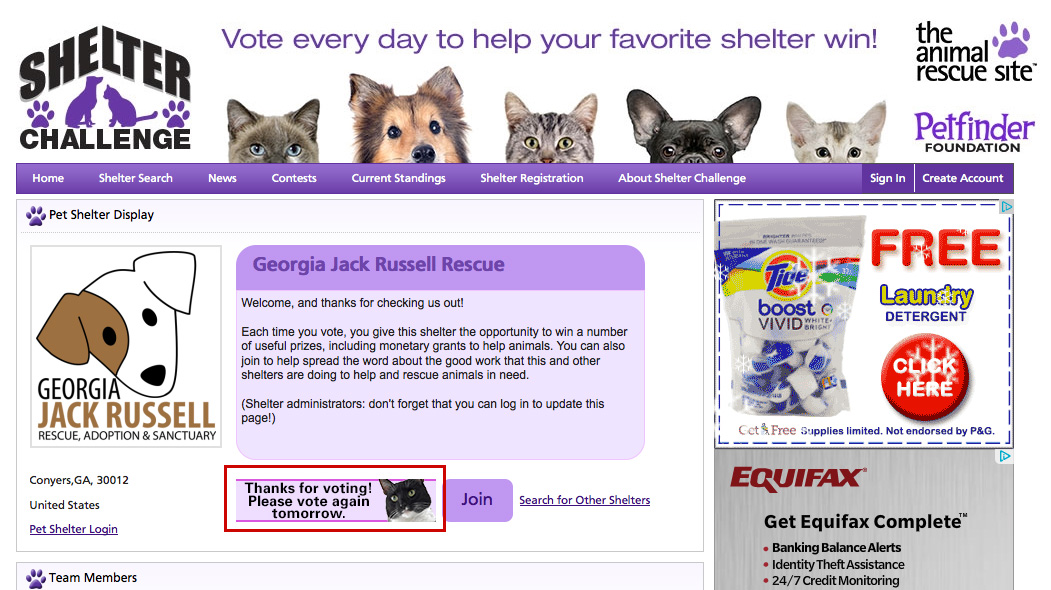 Vote for Georgia Jack Russell Rescue in the Shelter Challenge