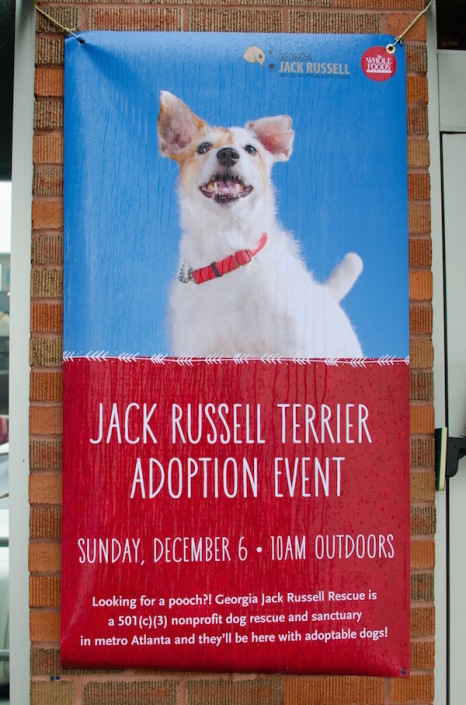 Whole Foods Adoption Event sign