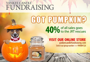 Yankee Candle Fundraiser for Jack Russell Rescue