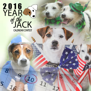 Year of the Jack Calendar Contest