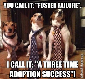 You Call It Foster Failure, I Call It A Three Time Adoption Success